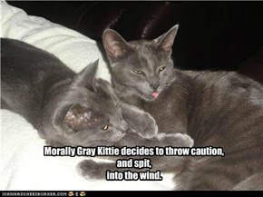 Morally Gray Kittie decides to throw caution, and spit, into the wind.
