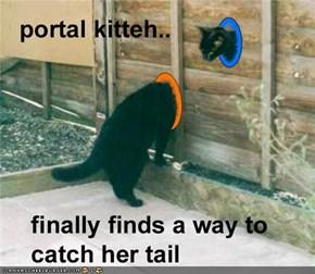 portal kitteh