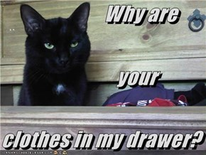 Why are your clothes in my drawer?