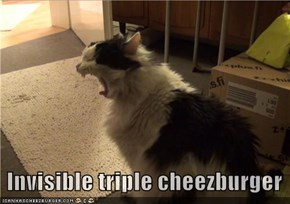 Invisible triple cheezburger