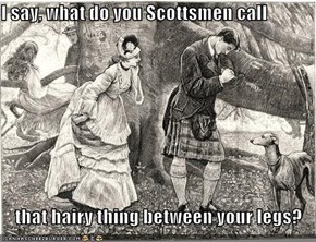 I say, what do you Scottsmen call  that hairy thing between your legs?