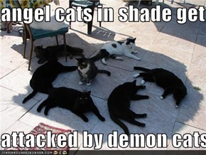 angel cats in shade get  attacked by demon cats