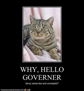 WHY, HELLO GOVERNER