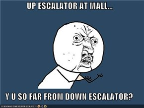 UP ESCALATOR AT MALL...  Y U SO FAR FROM DOWN ESCALATOR?