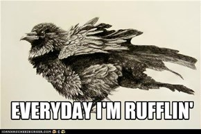 EVERYDAY I'M RUFFLIN'
