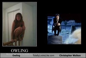 Owling Totally Looks Like Christopher Walken