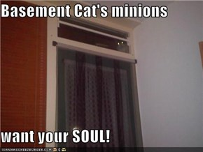 Basement Cat's minions  want your SOUL!