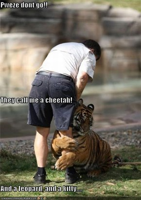 Pweze dont go!! They call me a cheetah! And a leopard, and a kitty....