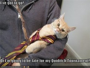 I've got to go!  Or I'm going to be late for my Quiditch Tournament!