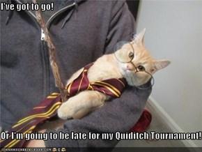 I've got to go!  Or I'm going to be late for my Quiditch Tournament!
