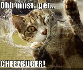 Ohh must.. get...  CHEEZBUGER!