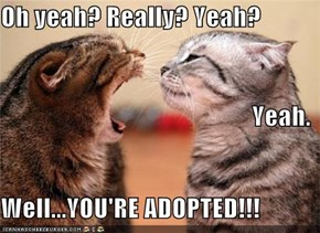 Oh yeah? Really? Yeah? Yeah.  Well...YOU'RE ADOPTED!!!