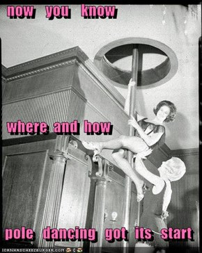 now    you    know   where  and  how     pole   dancing   got   its   start