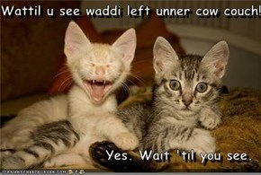 Wattil u see waddi left unner cow couch!  Yes. Wait 'til you see.