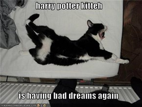 harry potter kitteh  is having bad dreams again