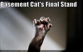 Basement Cat's Final Stand
