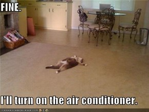 FINE.  I'll turn on the air conditioner.