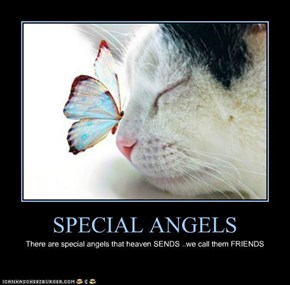 SPECIAL ANGELS