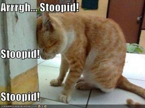 Arrrgh... Stoopid! Stoopid! Stoopid!