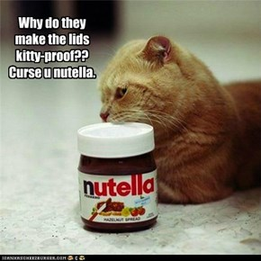 Why do they make the lids kitty-proof??  Curse u nutella.