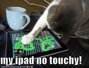 my ipad no touchy!