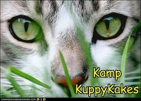 Kamp KuppyKakes