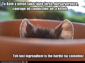 To Bath a kitteh takez bute forse, perserverence, courage ob conbiction-an  a kitteh.