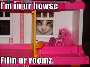 I'm in ur howse  Filin ur roomz.