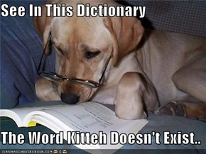 See In This Dictionary  The Word Kitteh Doesn't Exist..
