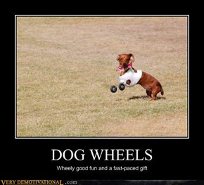 DOG WHEELS