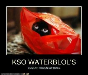 KSO WATERBLOL'S