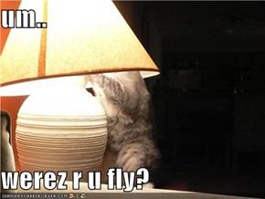 um..  werez r u fly?