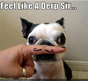 Feel Like A Derp Sir...