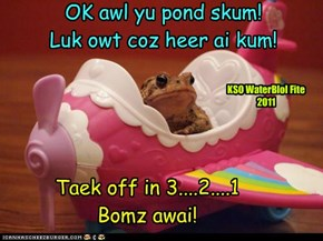 KSO WaterBlol Fite  A Froggie kumz a courtin da enemy!