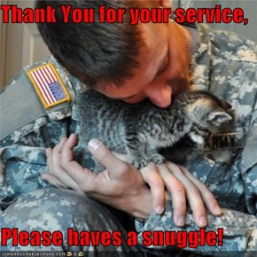 Thank You for your service,  Please haves a snuggle!