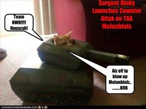 NWR Tank Attack!!!!!         NWR 20Elebenty Waterblol Fite