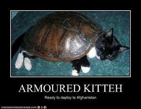 ARMOURED KITTEH