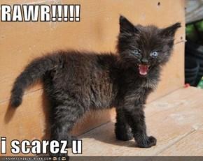 RAWR!!!!!  i scarez u