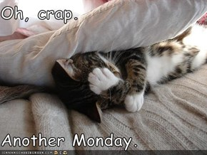 Oh, crap.  Another Monday.