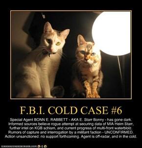 F.B.I. COLD CASE #6