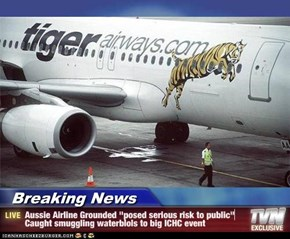 "Breaking News - Aussie Airline Grounded ""posed serious risk to public"" Caught smuggling waterblols to big ICHC event"