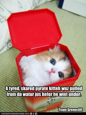 A tyred, skared pyrate kitteh wuz pulled frum da watur jus befor he wint undur.