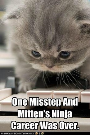 One Misstep And Mitten's Ninja Career Was Over.