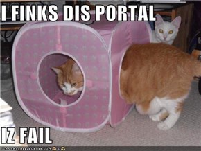 I FINKS DIS PORTAL  IZ FAIL