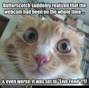 Butterscotch suddenly realized...
