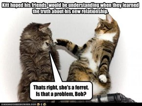 Kitt hoped his friends  would be understanding when they learned the truth about his new relationship.