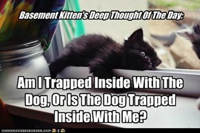 Basement Kitten's Deep Thought Of The Day: