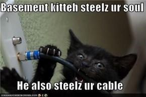 Basement kitteh steelz ur soul  He also steelz ur cable