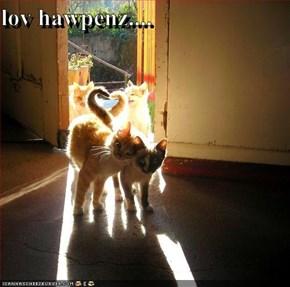 lov hawpenz....