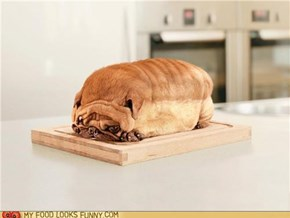 bread Doggy??